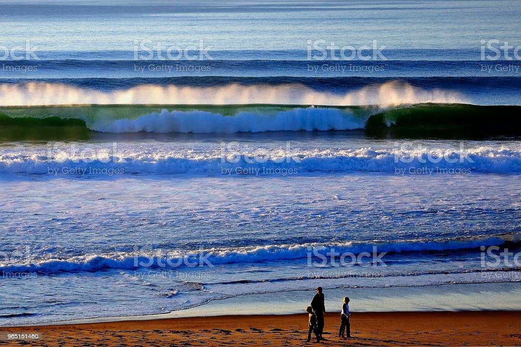 Beach Combing zbiór zdjęć royalty-free