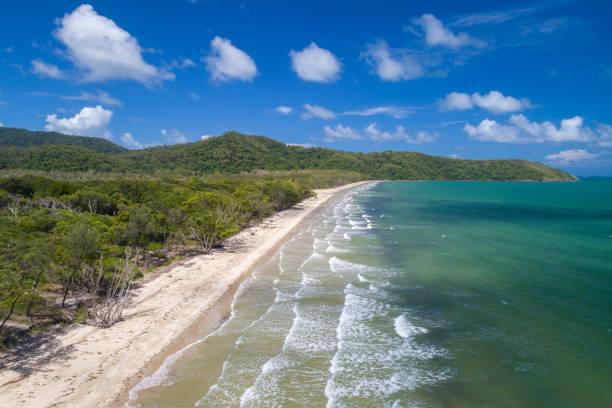 Beach, Daintree River, Cape Tribulation, Queensland, Australia stock photo