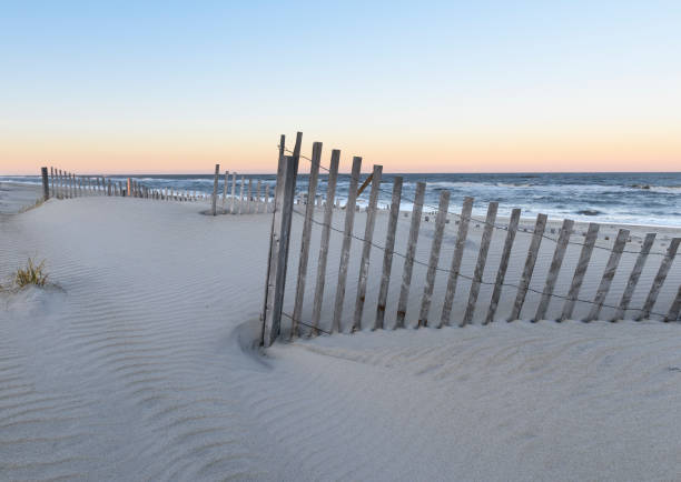 Beach Dune Fences at Sunset stock photo