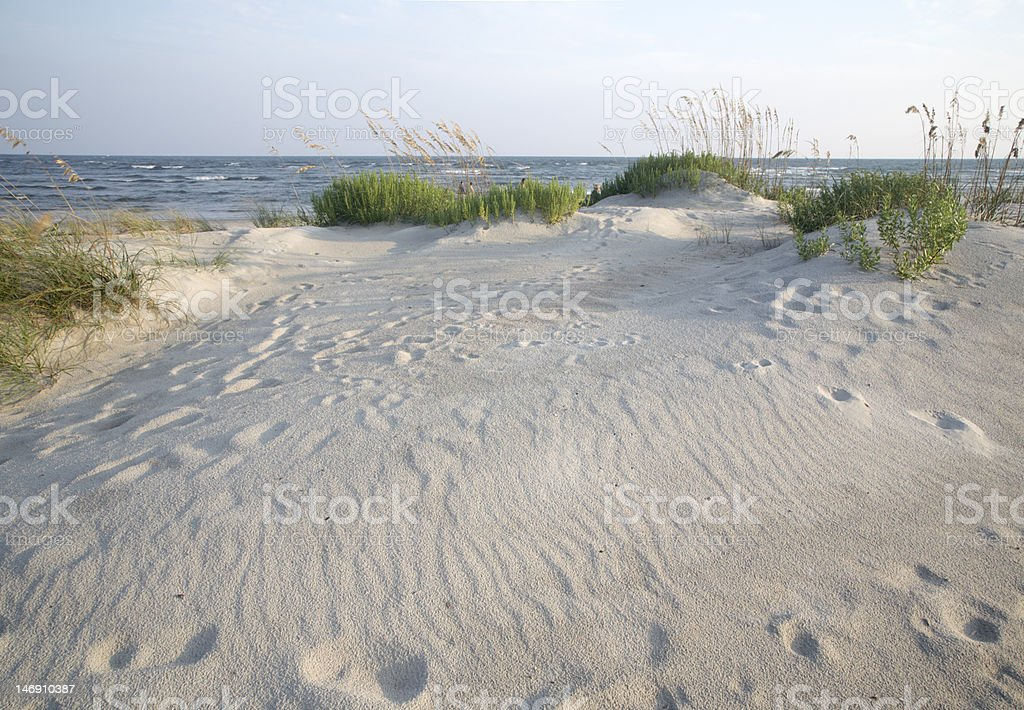 Beach Dune in the Late Afternoon royalty-free stock photo