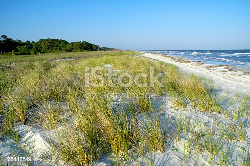 The beach dunes and sea grass glow in the light as the sun sets on an island in South Carolina. Perfect image for book or magazine spread or cover. Space for copy at top and bottom of image.
