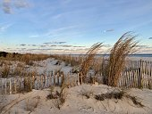 Sand dunes at Cape May, NJ.