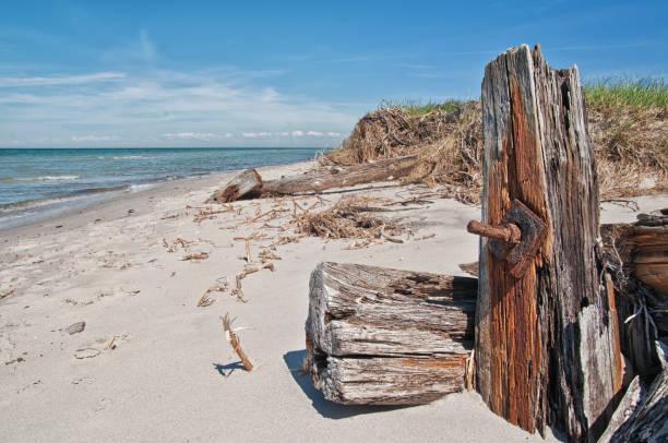 Strandgut – Foto