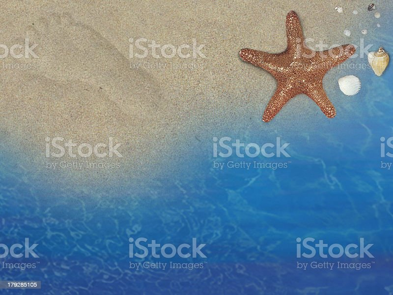 Beach from top royalty-free stock photo