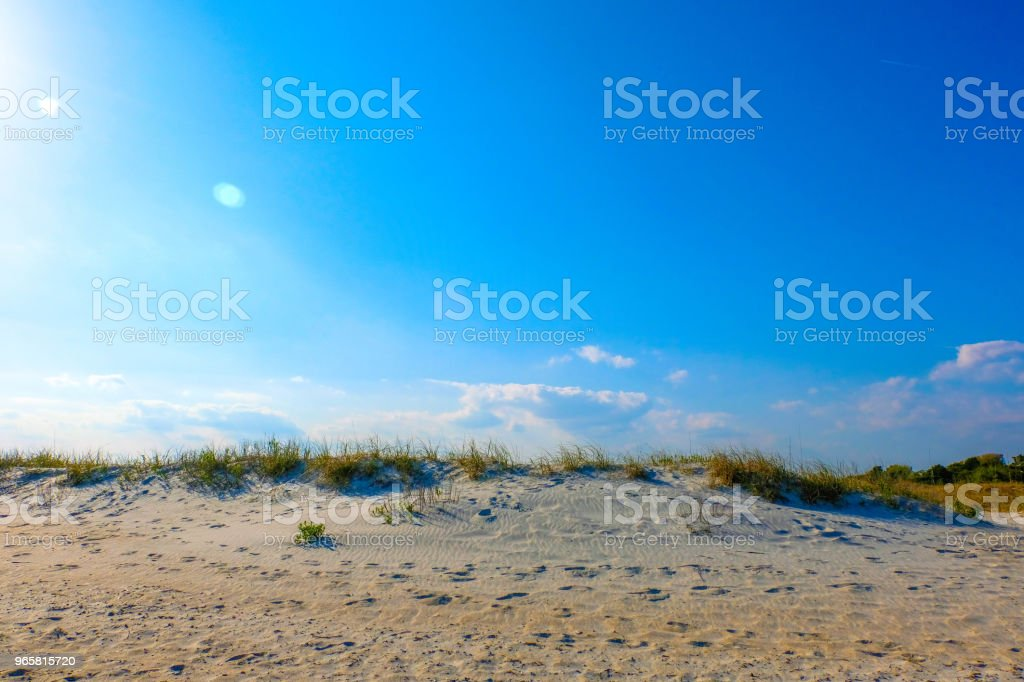 Beach Grass 3. - Royalty-free Backgrounds Stock Photo