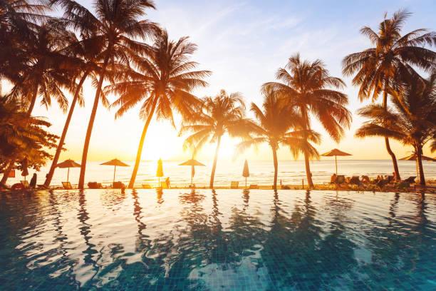 wakacje na plaży, luksusowy basen z palmami - kurort turystyczny zdjęcia i obrazy z banku zdjęć