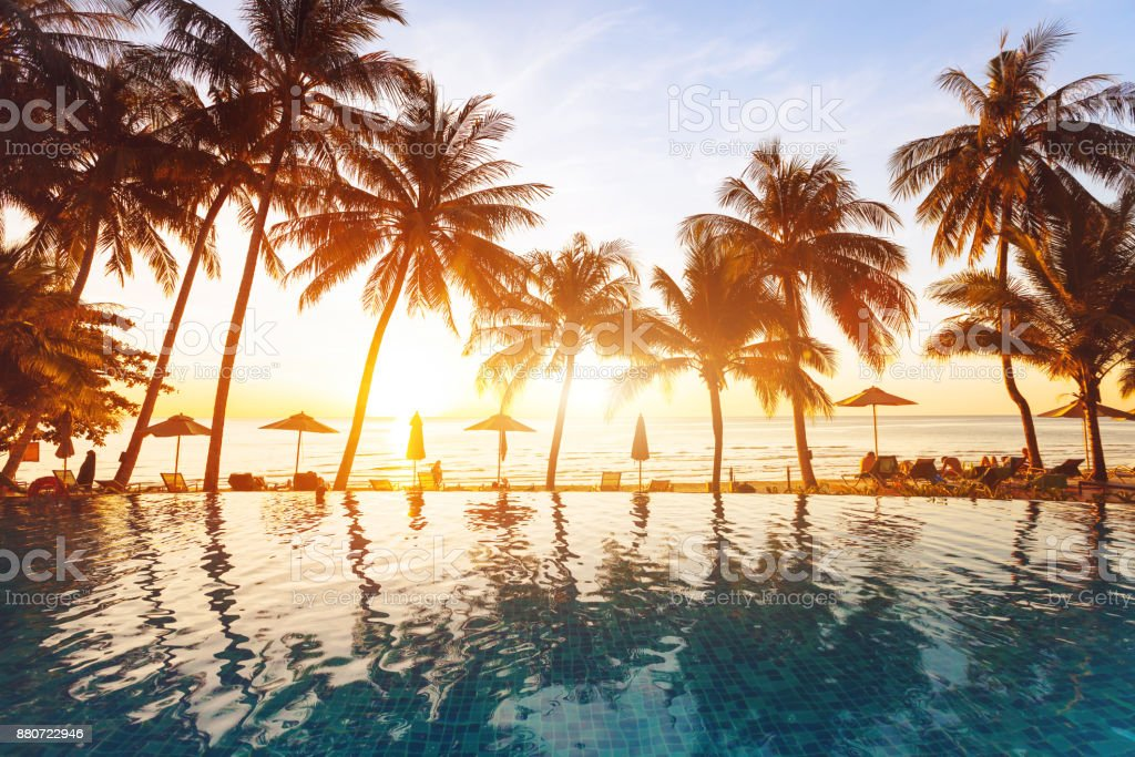 beach holidays, luxury swimming pool with palm trees stock photo