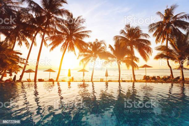 luxury swimming pool on the beach, tranquil scene of exotic tropical landscape with copy space, summer background for vacation holidays