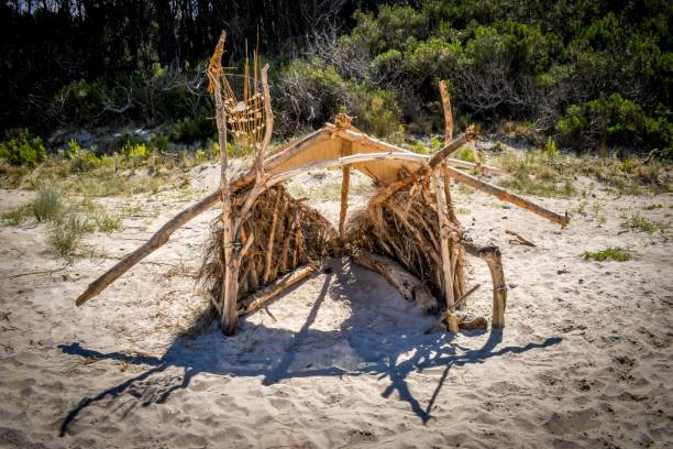 Beach hut made of drift wood on Opoutere beach New Zealand stock photo
