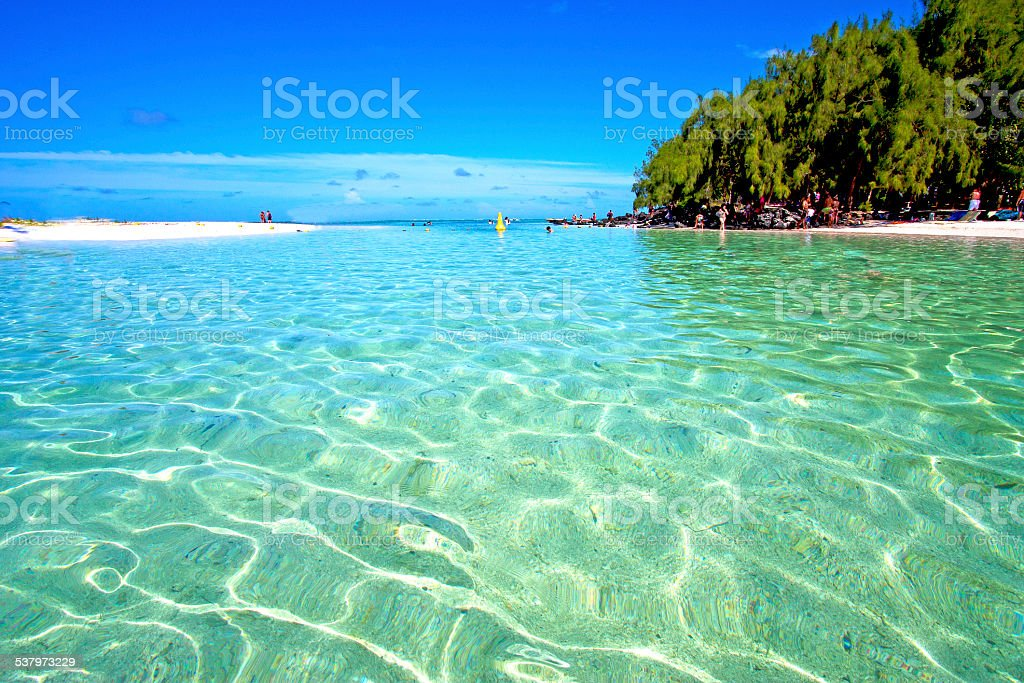 beach ile du cerfs seaweed in indian ocean people stock photo