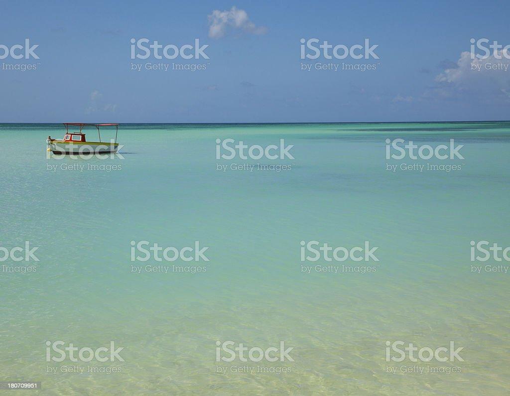 beach in aruba stock photo