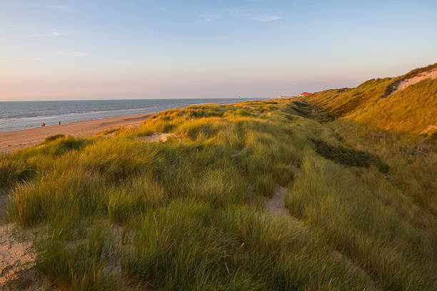 strand in belgien - nordsee urlaub hotel stock-fotos und bilder