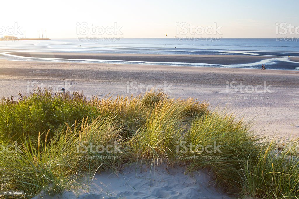Beach in Belgium​​​ foto