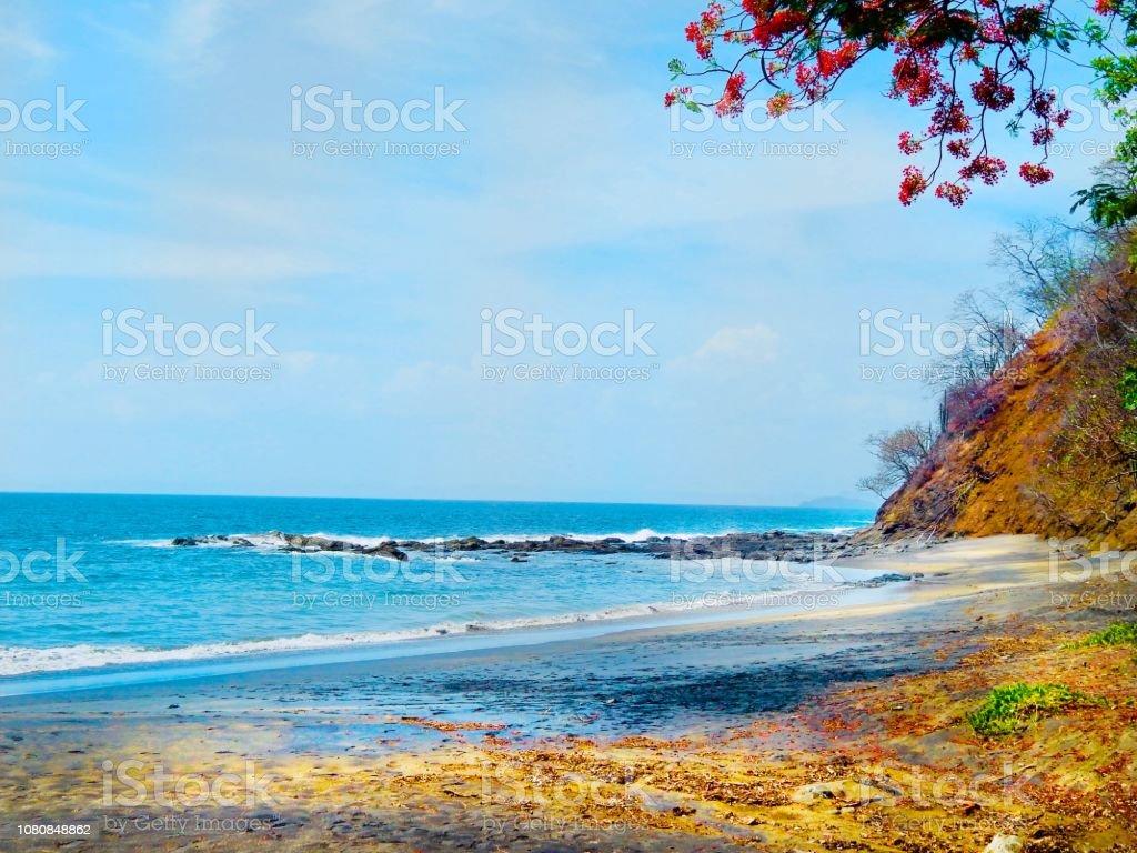 A Beach in Costa-Rica stock photo