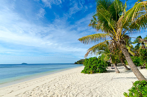Beach in Mamanuca Islands, Fiji stock photo
