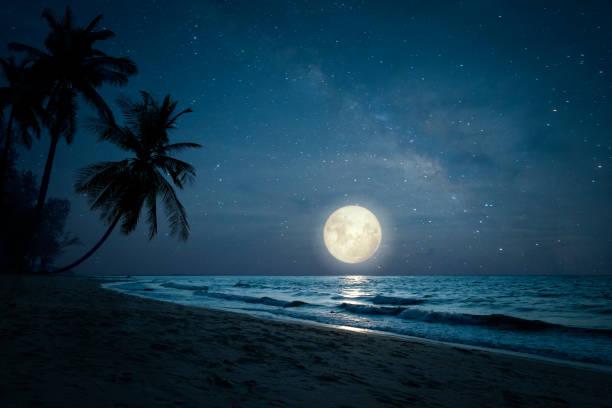 Strand am Nachthimmel und Vollmond – Foto