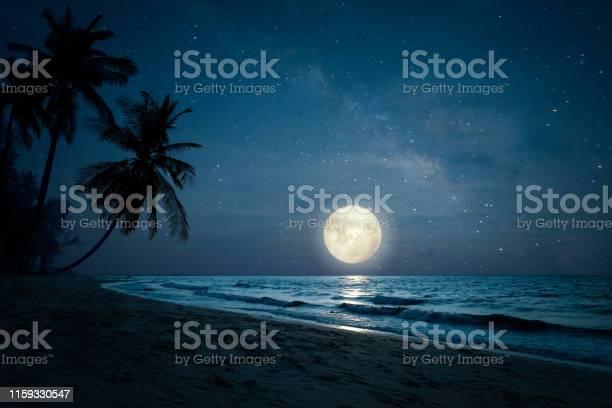 Photo of Beach in night skies and full moon
