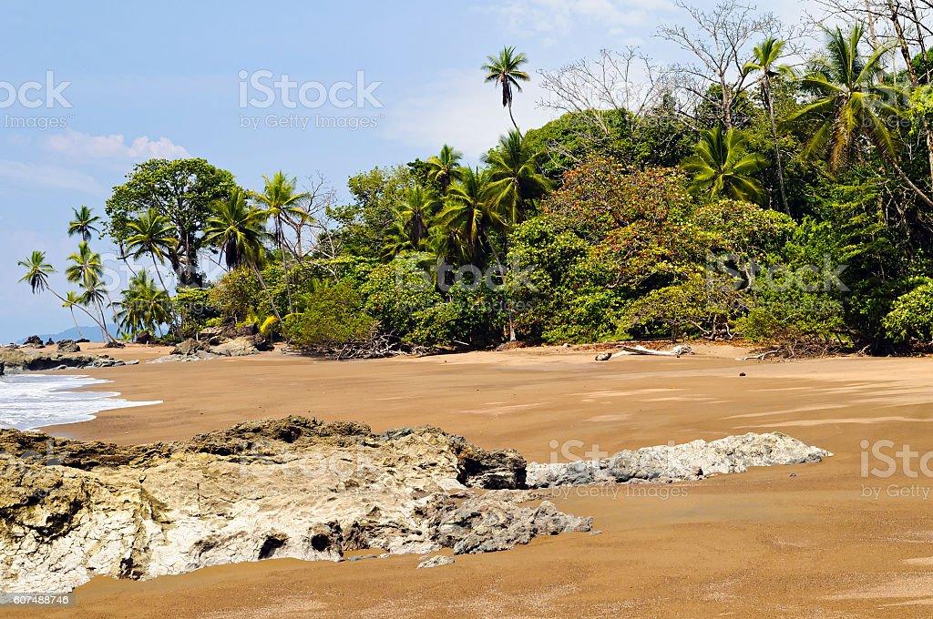 Beach in Osa Peninsula (Costa Rica). – Foto