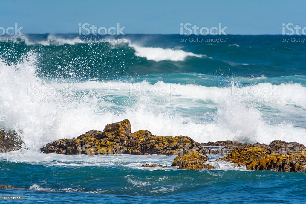 Beach in Port Elisabeth, South Africa stock photo