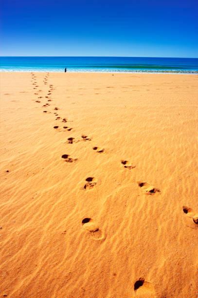 Beach in Portimao, Portugal. stock photo
