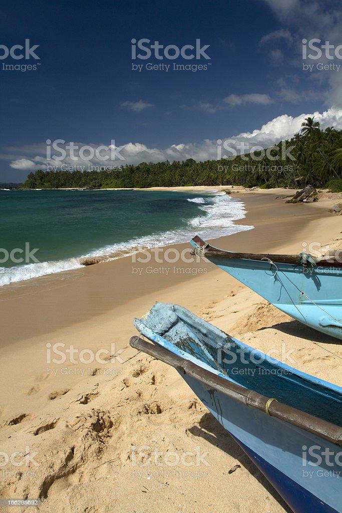Beach in Sri Lanka royalty-free stock photo