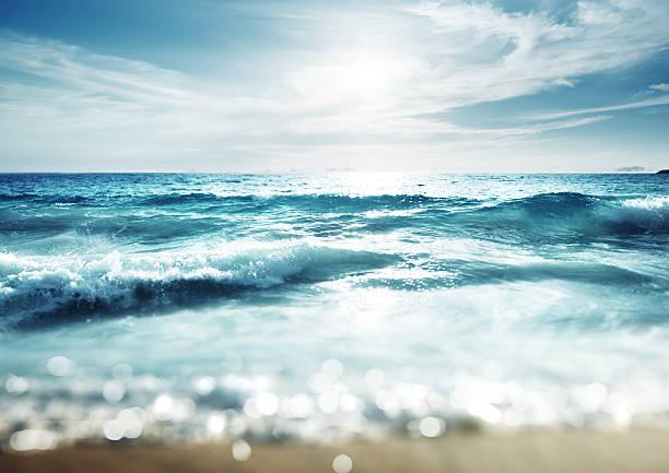 beach in sunset time, tilt shift effect – Foto