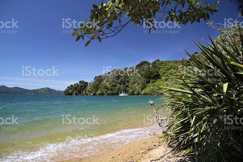 Beach  in the Marlborough Sounds royalty-free stock photo
