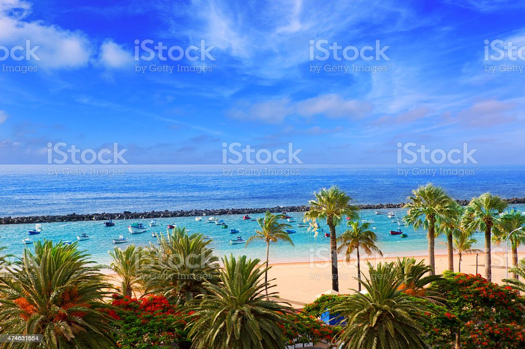 Beach Las Teresitas in Santa cruz de Tenerife north stock photo