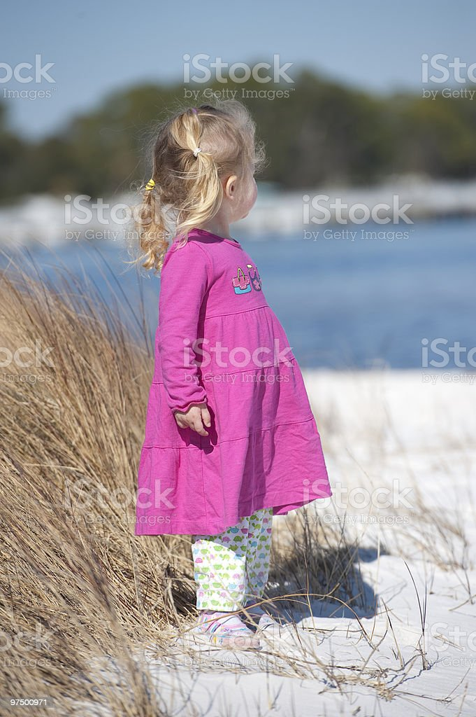 Beach Looker Toddler royalty-free stock photo