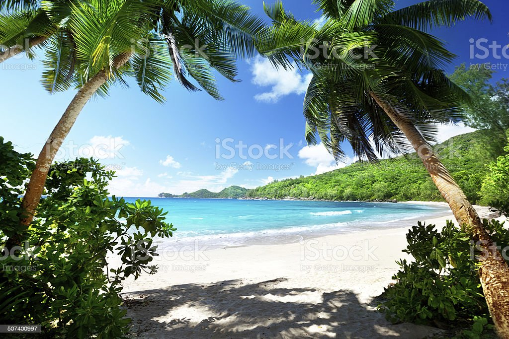 beach, Mahe island, Seychelles stock photo