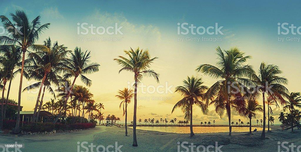 beach miami panorama stock photo