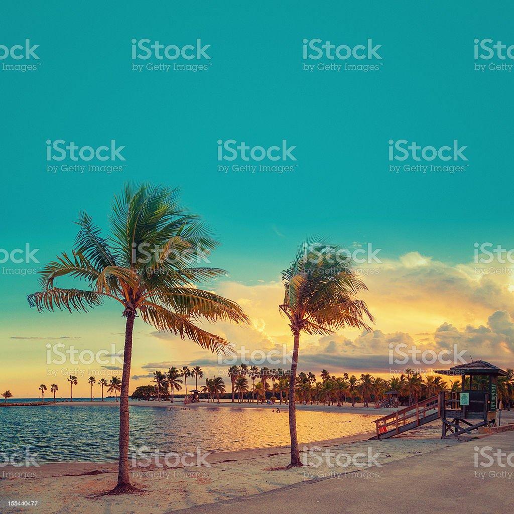 beach miami stock photo