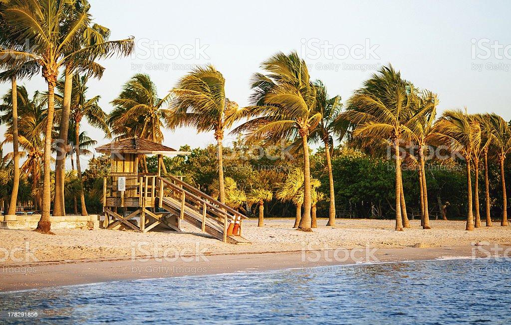 beach miami royalty-free stock photo