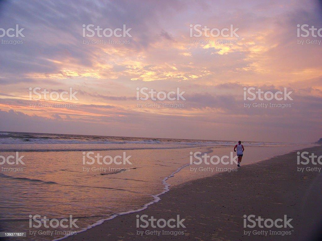 Beach - Morning Run royalty-free stock photo