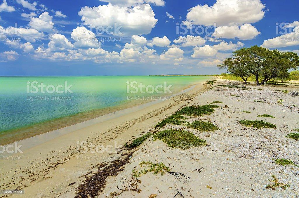 Beach near Cabo de la Vela stock photo