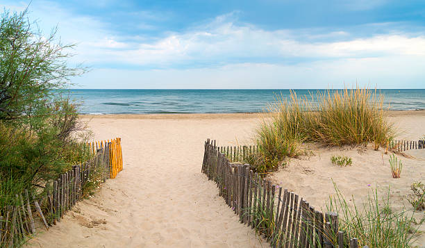 beach near montpellier (france) - june stock photos and pictures