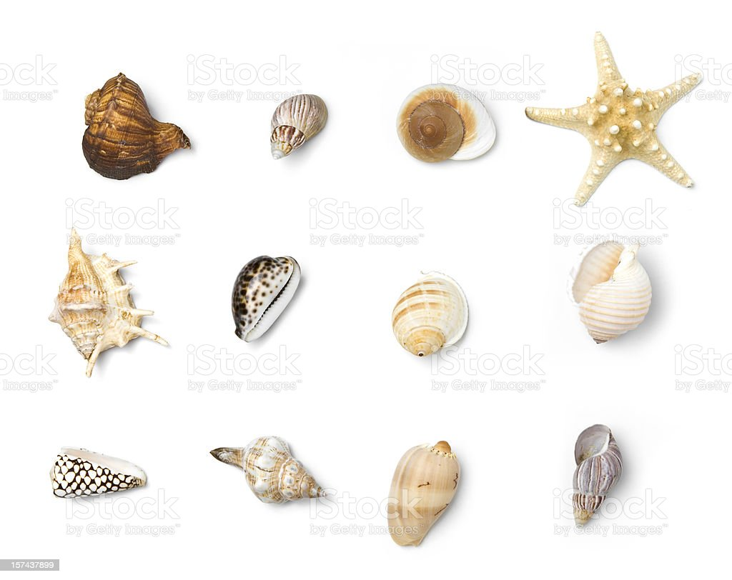 Beach Objects Series stock photo