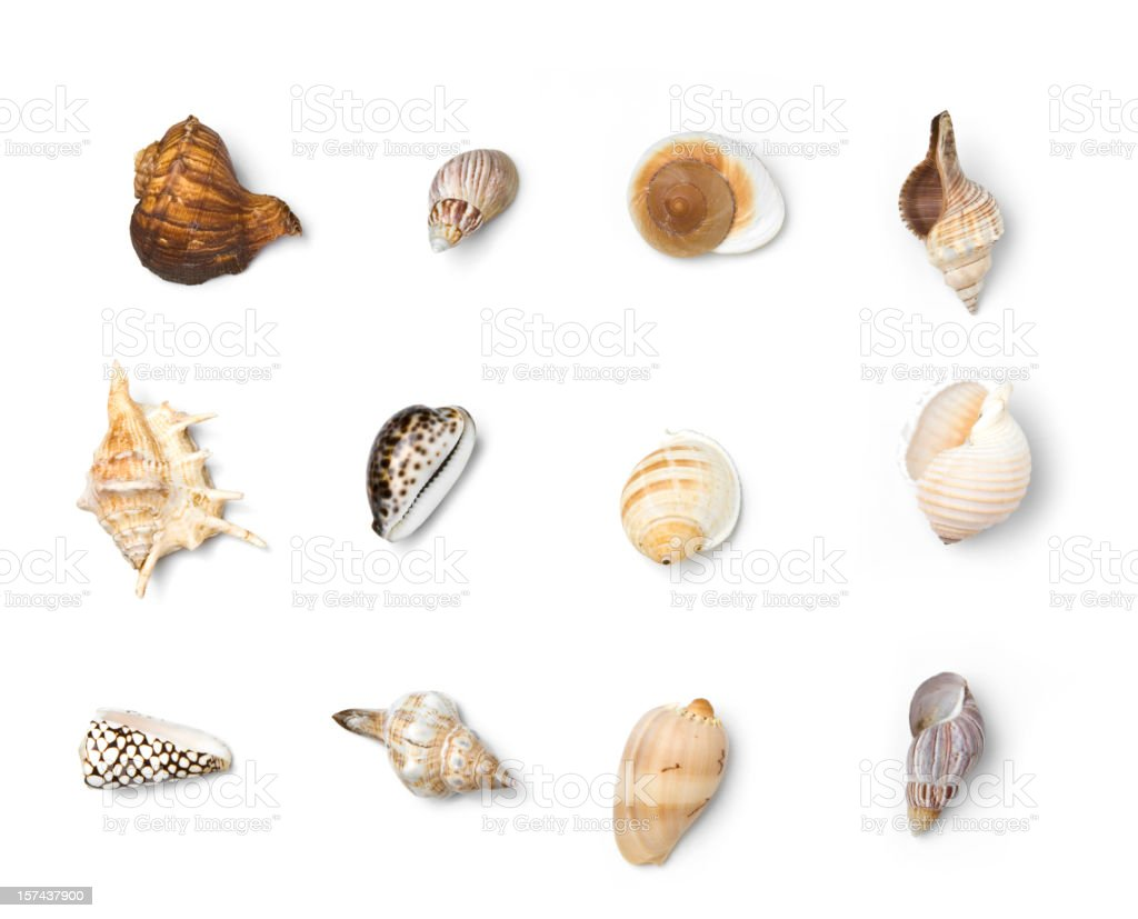Beach Objects XXXL Series stock photo