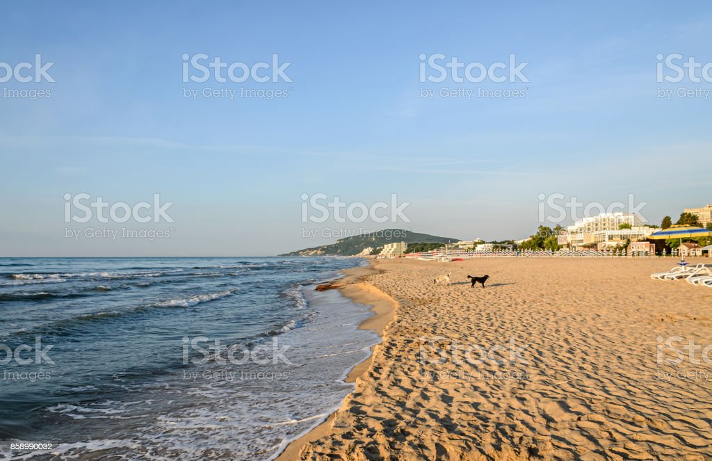 Beach of Black Sea from Albena, Bulgaria with golden sands, blue clear  water, hotels stock photo