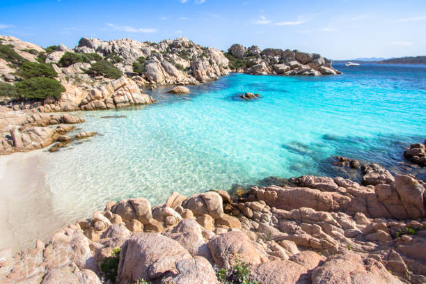 beach of cala coticcio, sardinia, italy - sardegna foto e immagini stock