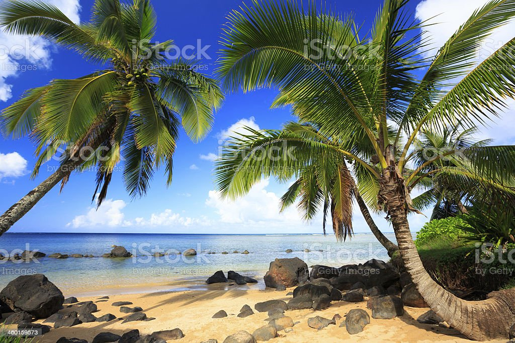 Beach of Kauai stock photo