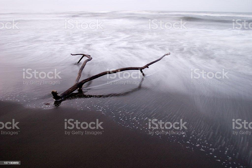 Beach of Solitude royalty-free stock photo