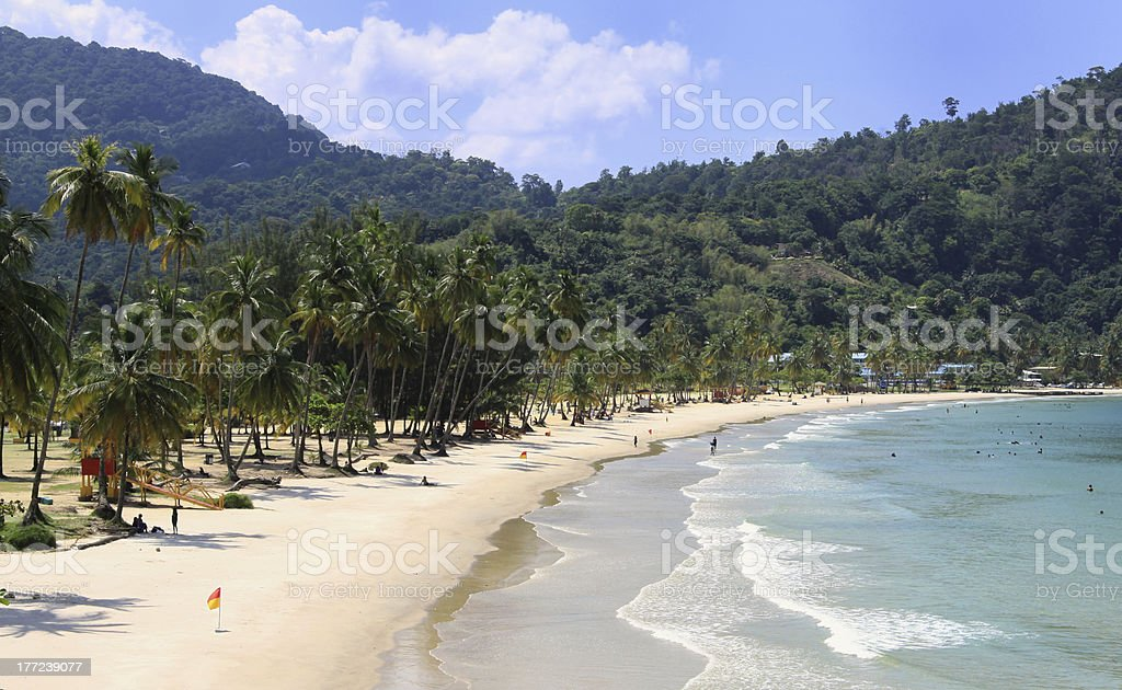 Beach of the Maracas Bay (Trinidad, West Indies) stock photo