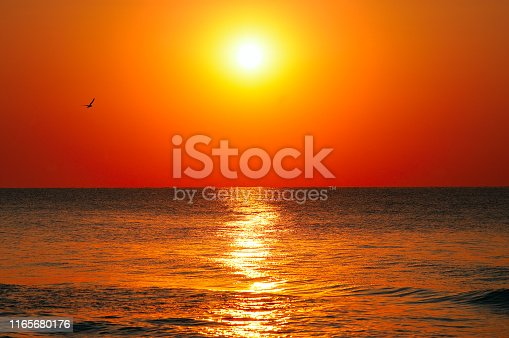 Beach of the ocean and red sunrise.
