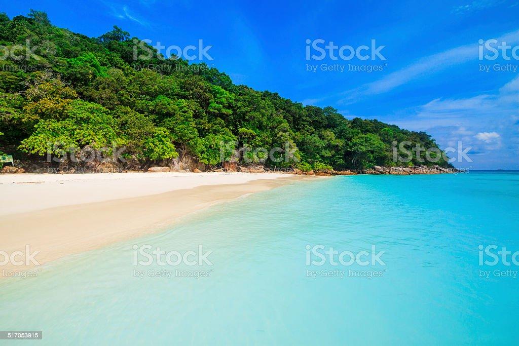 Beach of tropical crystal clear sea, Tachai island, Andaman, Tha stock photo