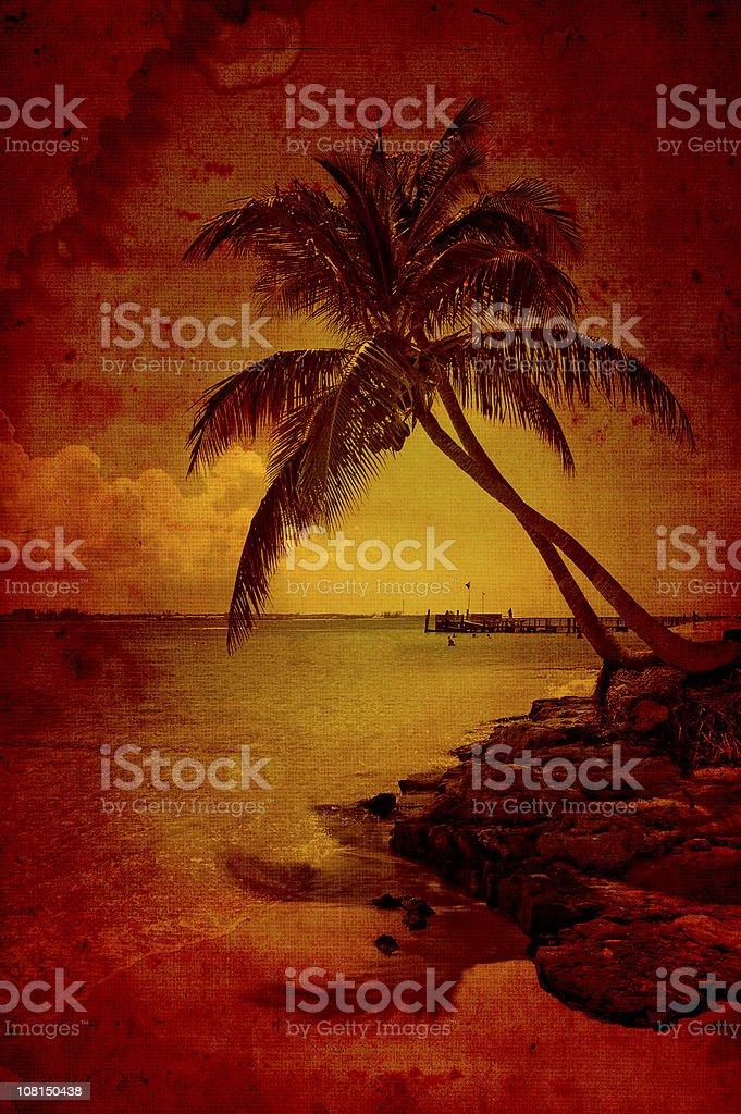 beach on fire royalty-free stock photo