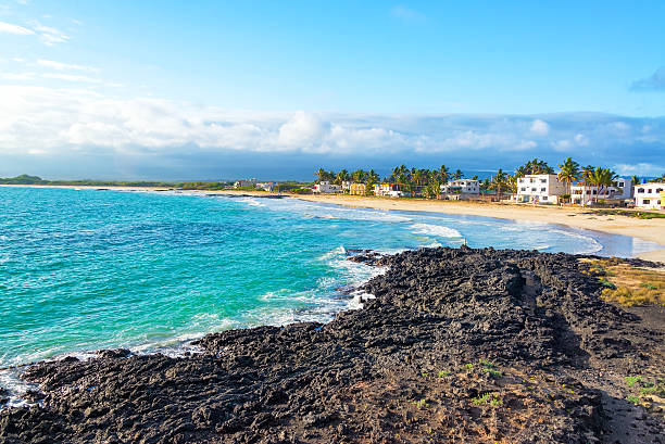 Beach on Isabela Island in Galapagos stock photo