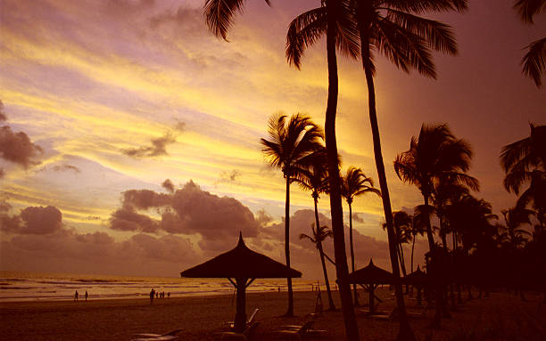 Beach on Ivory Coast Beach on Ivory Coast - palms, beach umbrella, sunset, exotic côte d'ivoire stock pictures, royalty-free photos & images