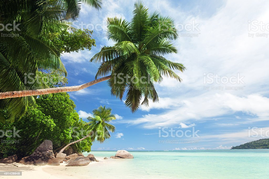 beach on Mahe island, Seychelles stock photo