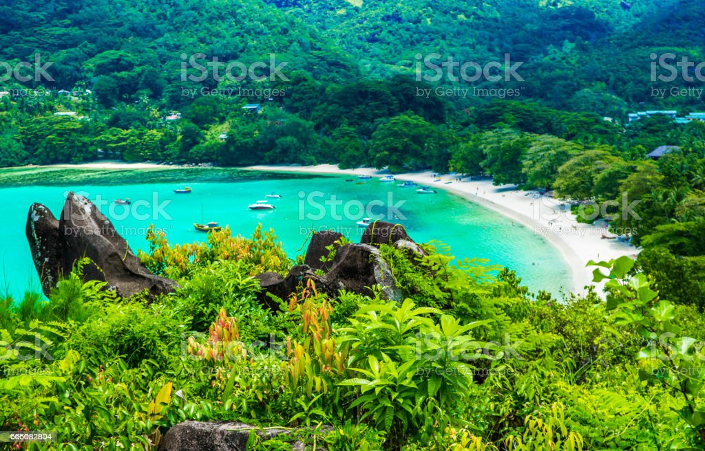 Beach on the Seychelles stock photo